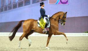 equitazione-biomeccanica-podologo-staffa-sanremo-2